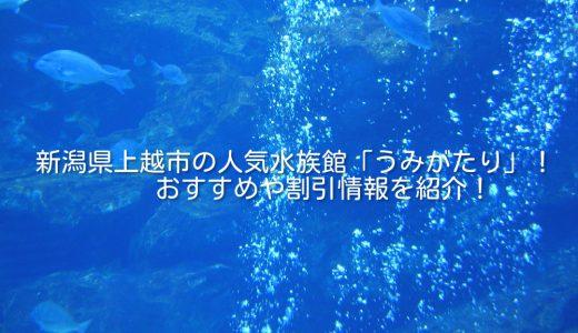 新潟県上越市の人気水族館「うみがたり」!おすすめや割引情報を紹介!